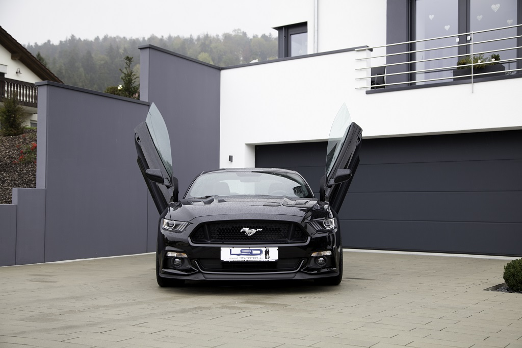 low_st_LSD_Mustang_000-63