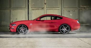 Nummer Eins von Sieben: Wolf Racing baut Ford Mustang Editionsmodell